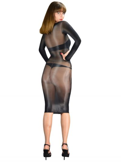 Pearl And Poseidon Delilah Glossy Long Sleeve Sheer Dress
